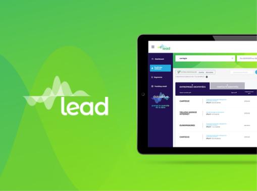 Data intelligence, solution Lead